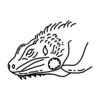 ícone de iguana. doodle desenhado à mão ou estilo de contorno vetor