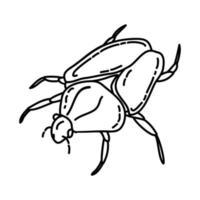 ícone de besouros Golias. doodle desenhado à mão ou estilo de contorno