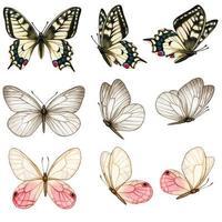 bela coleção de borboletas em aquarela em diferentes posições