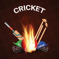 partida do torneio de críquete com estádio, bastões e troféu de ouro vetor