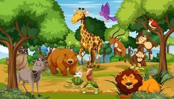 muitos animais diferentes na cena da floresta vetor