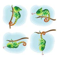 conjunto de desenho vetorial de camaleão fofo vetor