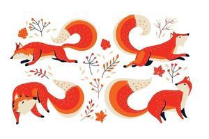 conjunto de animal raposa com fundo de folhagem vetor