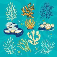 ilustração vetorial conjunto de corais e esponjas do mar vetor