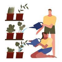 mulher e homem cuidando das plantas vetor