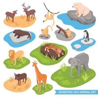 conjunto isométrico de animais do zoológico vetor
