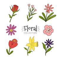 Coleção de flores coloridas vetor