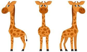 girafa bebê em poses diferentes. vetor