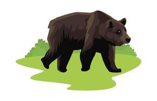 animal urso selvagem no campo vetor