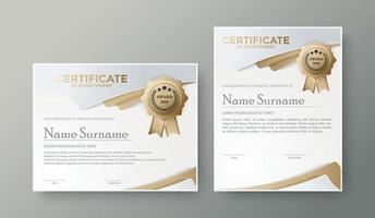 modelo de certificado profissional conjunto de design de prêmio de diploma vetor