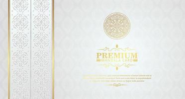 luxuoso fundo branco mandala com molduras decorativas vetor