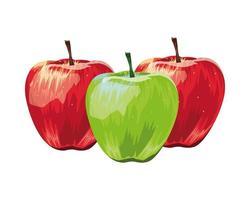 maçãs frutas frescas isoladas ícones vetor
