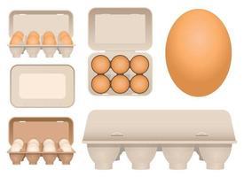 Ovos de galinha em papelão ilustração vetorial design conjunto isolado no fundo branco vetor