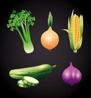 vegetais orgânicos frescos, alimentos saudáveis, estilo de vida saudável ou dieta em fundo preto
