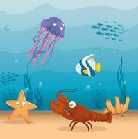 fundo da vida marinha