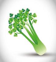 planta de aipo, folhas verdes, vegetais orgânicos frescos