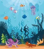 fundo da vida marinha vetor