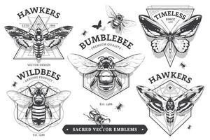 emblemas vetoriais com insetos vetor