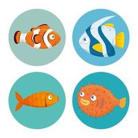 conjunto de ícones de peixe vetor
