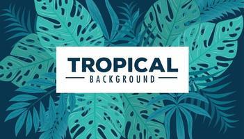 fundo tropical com folhagem verde vetor