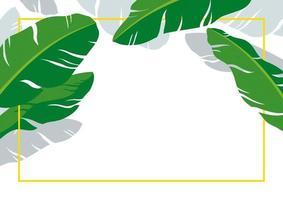 folhas de bananeira com moldura de linha no fundo branco ilustração vetorial verão tropical