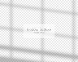 efeito de sobreposição de sombra. sombras naturais da janela isoladas vetor