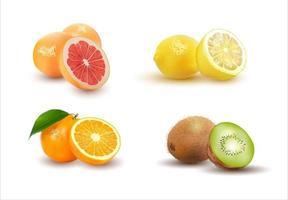 conjunto realista de ilustração vetorial de frutas isolado no branco vetor