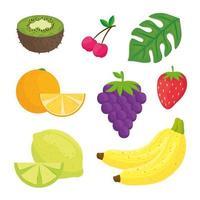 conjunto de frutas com folha tropical
