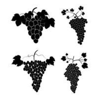 conjunto de uvas vetor