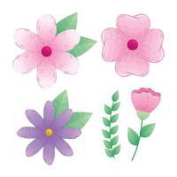 conjunto de flores rosa e roxas com ramos e folhas