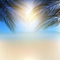 Fundo de árvore de palma de verão vetor