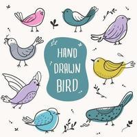 conjunto de pássaros desenhados à mão vetor