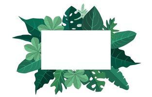 fundo de quadro tropical com folhas de monstera ao redor da borda vetor