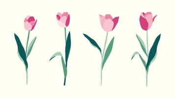 conjunto de flores de tulipas desenhadas à mão em fundo branco