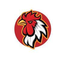 cabeça de galo de frango com fundo de círculo vermelho isolado no fundo branco