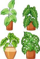 conjunto de diferentes plantas em vaso com solo vetor