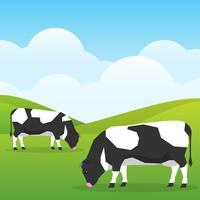 Vacas pastam em um campo de bom dia ensolarado na ilustração de fundo de natureza vetor