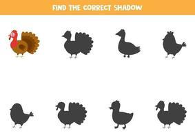 Encontre a sombra correta do peru da fazenda. quebra-cabeça lógico para crianças. vetor