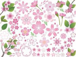 conjunto de elementos gráficos de flores de cerejeira isolado em um fundo branco. ilustração vetorial. vetor