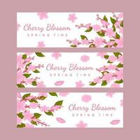 coleção de banner de flor de cerejeira vetor