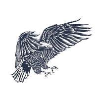 arte da ilustração da águia vetor