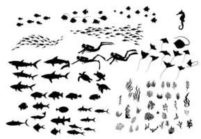 conjunto de fauna marinha, plantas e silhuetas de mergulhadores vetor