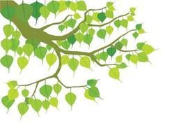árvore budista em vetor gráfico de ilustração