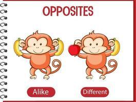 palavras opostas com iguais e diferentes vetor