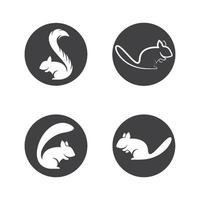 conjunto de ilustração de imagens de logotipo de esquilo vetor