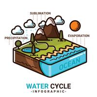 Infográfico de ciclo da água