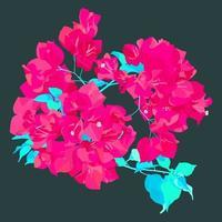 estilo simples de vetor, flor de papel de buganvílias rosa super néon com folhas, ilustração de flores tropicais frescas vetor