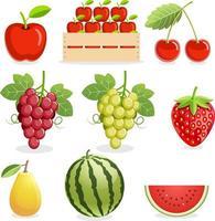 conjunto de frutas coloridas vetor