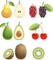 conjunto de ícones coloridos de frutas pêra, amora, cereja, kiwi, abacate. ilustração vetorial.