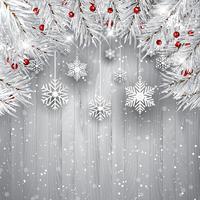 Flocos de neve pendurados com galhos de árvore de Natal prata